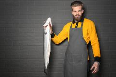 Handsome seller holding fresh fish. On gray wall background Stock Image