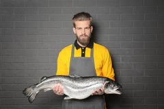 Handsome seller holding fresh fish. On gray wall background Stock Photography