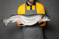 Handsome seller holding fresh fish. On gray wall background Stock Images