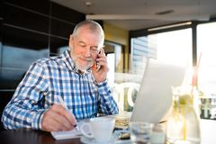 Senior businessman with smartphone and laptop in cafe Royalty Free Stock Photo