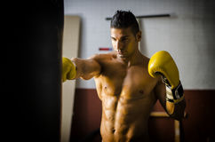 Handsome shirtless man with boxer`s gloves royalty free stock photo