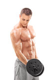 Handsome shirtless man exercising with a barbell royalty free stock photography