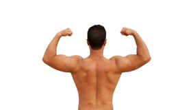 Handsome shirtless man Royalty Free Stock Image