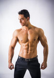 Handsome shirtless muscular man with elegant pants Royalty Free Stock Photography