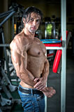 Handsome shirtless muscular man with jeans in gym Stock Image