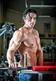 Handsome shirtless muscular man with jeans in gym Stock Photography