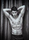 Handsome shirtless muscular young man, looking at camera Royalty Free Stock Photos