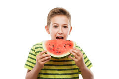 Handsome smiling child boy holding red watermelon fruit slice. Handsome smiling child boy hand holding red ripe watermelon fruit food slice white isolated Stock Photography