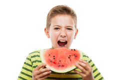 Handsome smiling child boy holding red watermelon fruit slice. Handsome smiling child boy hand holding red ripe watermelon fruit food slice white isolated Royalty Free Stock Photo