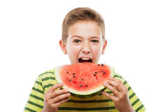 Handsome smiling child boy holding red watermelon fruit slice stock photo