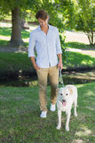 Handsome smiling man walking his labrador in the park Stock Photography