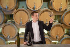 Handsome sommelier or winemaker looking at wine glass in the cellar. Handsome sommelier or winemaker looking at wine glass with red wine in the cellar royalty free stock images