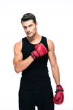 Handsome sports man with boxing gloves Royalty Free Stock Photo