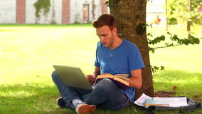 Handsome student studying outside Stock Photography