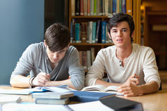 Handsome students reviewing their notes Stock Image