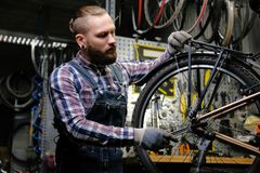 Handsome stylish male wearing a flannel shirt and jeans coverall, working with a bicycle wheel in a repair shop. A. A handsome stylish male wearing a flannel Stock Images