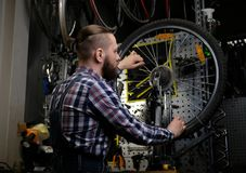 Handsome stylish male wearing a flannel shirt and jeans coverall, working with a bicycle wheel in a repair shop. A handsome stylish male wearing a flannel shirt Royalty Free Stock Photo