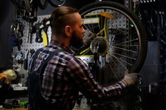 Handsome stylish male wearing a flannel shirt and jeans coverall, working with a bicycle wheel in a repair shop. A handsome stylish male wearing a flannel shirt Royalty Free Stock Photos
