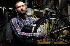 Handsome stylish male wearing a flannel shirt and jeans coverall, working with a bicycle wheel in a repair shop. A. A handsome stylish male wearing a flannel Royalty Free Stock Photos