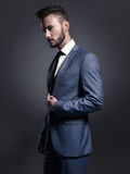 Handsome stylish man in blue suit Royalty Free Stock Images