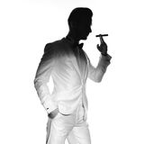 Handsome stylish man Royalty Free Stock Image