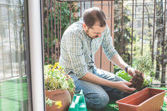 Handsome stylish man gardening Stock Photo