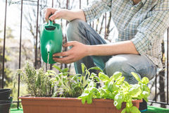 Handsome stylish man gardening and watering Royalty Free Stock Photo