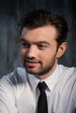 Handsome stylish man Stock Images