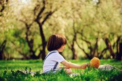 Handsome stylish 3 years old toddler child boy with funny face in suspenders enjoying sweets on picnic in spring. Or summer garden or park and feeding his teddy Royalty Free Stock Photography