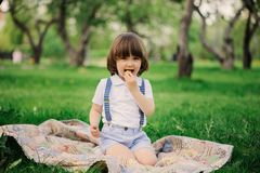 Handsome stylish 3 years old toddler child boy with funny face in suspenders enjoying sweets on picnic in spring or summer garden. Or park Royalty Free Stock Photography