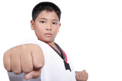 Handsome taekwondo boy trained fight activity Stock Photos