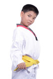 Handsome taekwondo boy trained fight activity Royalty Free Stock Photo