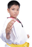 Handsome taekwondo boy trained fight activity Royalty Free Stock Photography