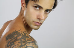 Handsome tattooed man. Close up portrait of a very handsome man Royalty Free Stock Photo