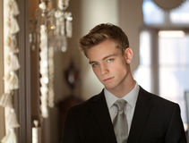 Handsome Teen in Elegant Surroundings Royalty Free Stock Image