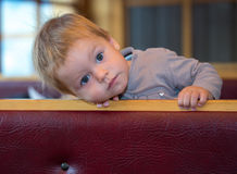Handsome toddler has little rest in cafe. Puttin his head on the bench Stock Image