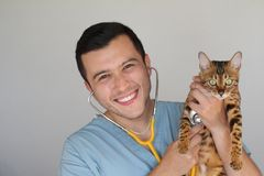 Handsome vet holding a cute bengal cat.  Royalty Free Stock Images