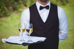 Handsome waiter holding a tray with two glasses of wine Royalty Free Stock Photos