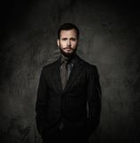 Handsome well-dressed man Royalty Free Stock Photo