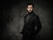 Handsome well-dressed Royalty Free Stock Photography