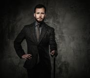 Handsome well-dressed man Stock Images