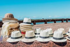 Handsome white Havana hats with black bands on display on the streets stock photo