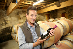 Handsome winegrower with bottle of wine. Handsome winegrower holding bottle of red wine Royalty Free Stock Photography