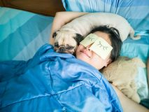Handsome woman resting and sleeping rest with her pug dog annoy. On bed in the bedroom. Pet and owner funny concept. Lonely woman and her best friend royalty free stock image