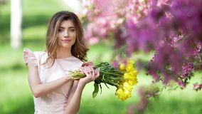 Handsome woman smell bouquet of tulips. Handsome young woman with bouquet of tulips among flowering garden. Petals falls from trees stock video footage