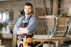 Handsome woodworker posing for photography Stock Image