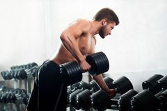 Handsome young athlete working out at the gym Royalty Free Stock Image