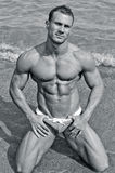 Handsome young bodybuilder in bathing suit kneeling on the beach Stock Images