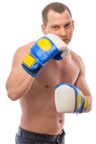 Handsome young boxer in gloves on a white Royalty Free Stock Image