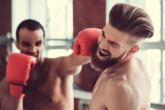 Handsome young boxers. Handsome young muscular boxers with bare torsos are practicing at the fight club Stock Image